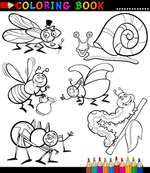 Insetti e bug per coloring book