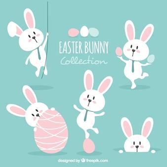 Insieme bello coniglio di Pasqua