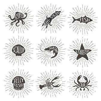 Insieme degli animali di mare disegnati a mano dell'annata con i raggi del sole.