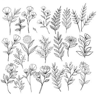 Insieme dei fiori e dei rami d'annata con stile disegnato a mano o di schizzo su fondo bianco