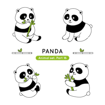 Insieme dei panda di scarabocchio in varie pose isolato