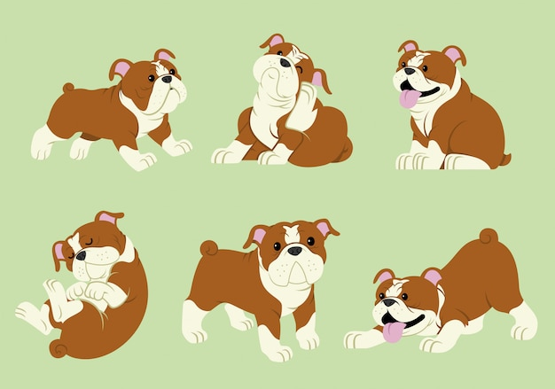 Insieme del fumetto del bulldog