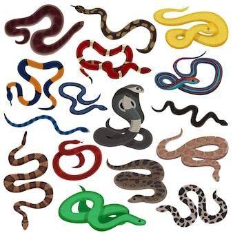 Insieme del fumetto di serpenti velenosi