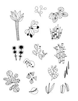 Insieme del vettore di tiraggio della mano di foglie di doodle