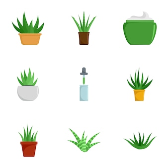 Insieme dell'icona della pianta dell'aloe vera, stile piano