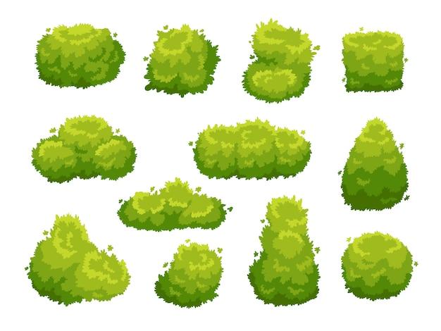 Insieme dell'icona di cespugli di vegetazione giardino verde