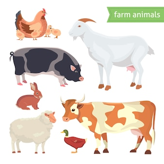 Insieme dell'illustrazione di vettore del fumetto degli animali da allevamento isolato su bianco