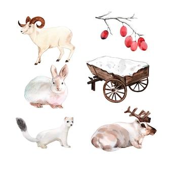 Insieme dell'illustrazione isolata dell'animale di inverno dell'acquerello.