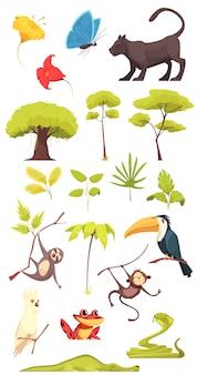 Insieme della giungla della foresta pluviale