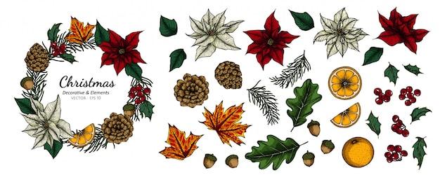 Insieme della raccolta del fiore decorativo e delle foglie di natale che disegnano illustrazione.