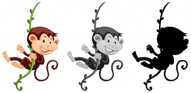 Insieme della scimmia che appende sulla vite