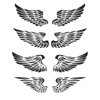 Insieme delle ali d'annata su fondo bianco. elementi per logo, etichetta, emblema, segno, marchio.
