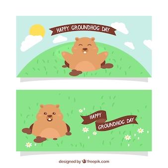 Insieme delle bandiere groundhog felici con i nastri