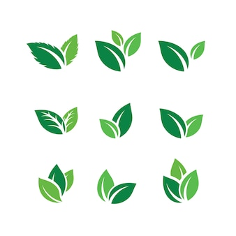 Insieme delle icone di vettore di ispirazione di progettazione di logo di foglia verde