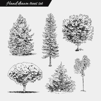 Insieme di alberi disegnati a mano. illustrazione di disegno di schizzo