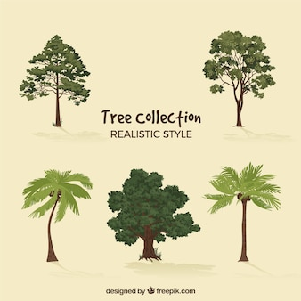 Insieme di alberi in stile 2d