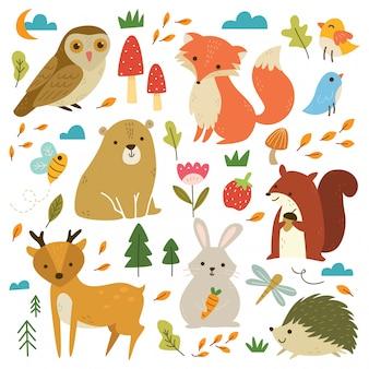 Insieme di animali del bosco