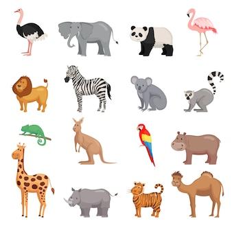 Insieme di animali dello zoo