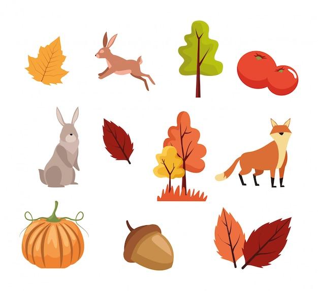 Insieme di animali, foglie e alberi di stagione autunnale