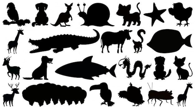 Insieme di animali isolati sihouette b & w