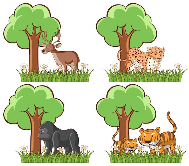 Insieme di animali selvatici nel parco con stagno e albero