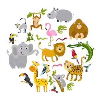 Insieme di animali tropicali in un cerchio