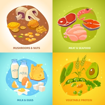 Insieme di carta di concetto dell'alimento della proteina