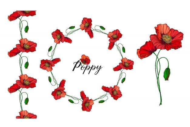 Insieme di composizioni floreali con fiori rossi del papavero