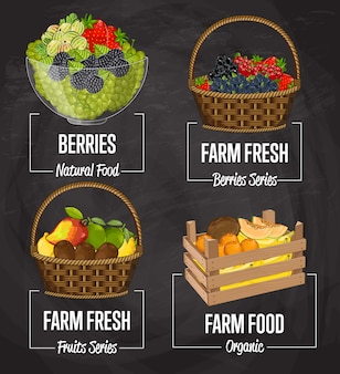 Insieme di concetto di frutta fattoria biologica