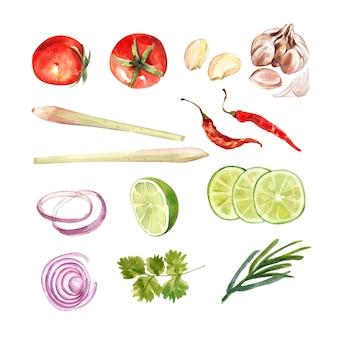 Insieme di coriandolo isolato dell'acquerello, citronella, peperoncino rosso, illustrazione della cipolla per uso decorativo.