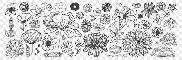 Insieme di doodle di fiori disegnati a mano.