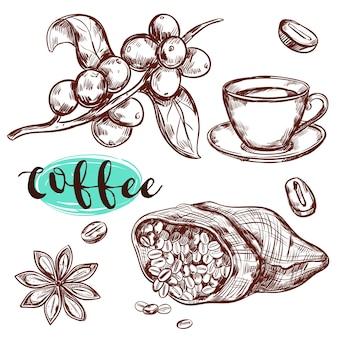 Insieme di elementi del ramo di caffè