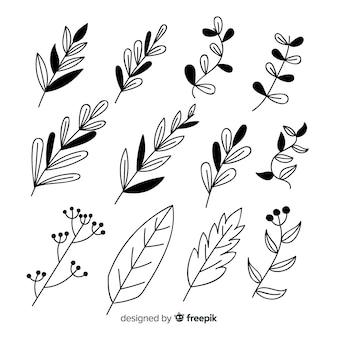Insieme di elementi di decorazione floreale incolore disegnati a mano