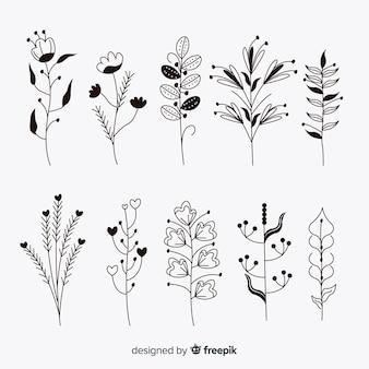 Insieme di elementi di decorazione floreale incolore