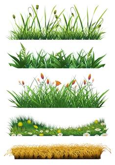 Insieme di elementi di erba. erba fresca natura ed ecologia