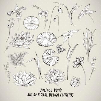 Insieme di elementi di fiori d'acqua stagno dell'annata