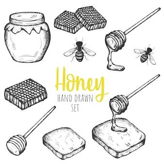 Insieme di elementi disegnato a mano di progettazione del miele, progettazione d'annata isolata vettore.