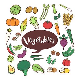 Insieme di elementi vegetali in mano disegnati scarabocchi