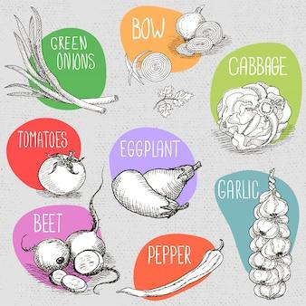 Insieme di gesso disegnato su un alimento di lavagna, spezie.