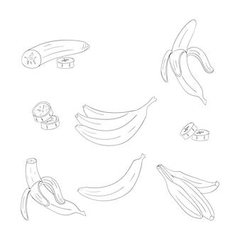 Insieme di illustrazioni di contorno singolo e mazzo di banane