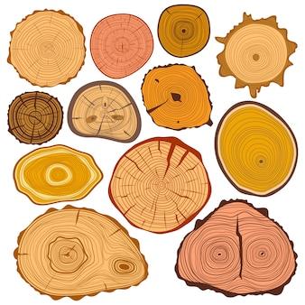 Insieme di legno della materia prima del taglio del cerchio di treee di struttura della fetta
