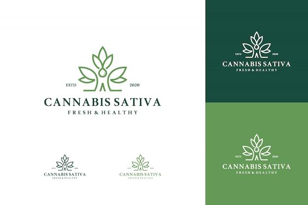 Insieme di logo di cannabis medica di marijuana salute