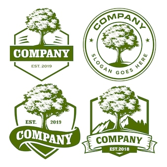 Insieme di modelli di logo di quercia
