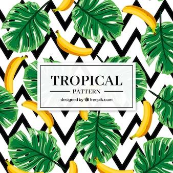 Insieme di modelli tropicali con banane in stile piano