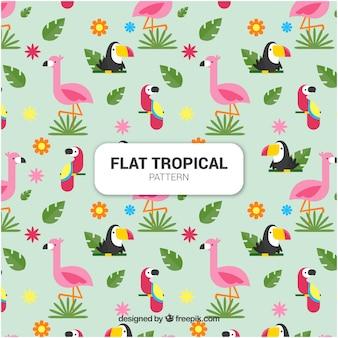 Insieme di modelli tropicali con uccelli in stile piano