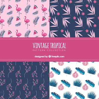 Insieme di modelli tropicali in stile vintage