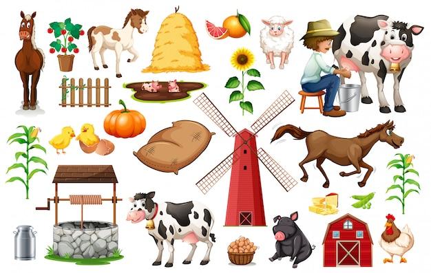 Insieme di oggetti della fattoria