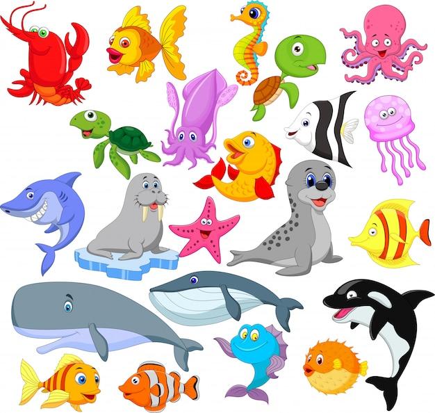 Insieme di raccolta di vita di mare dei cartoni animati