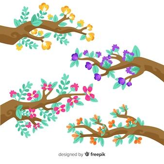 Insieme di rami e fiori su sfondo bianco