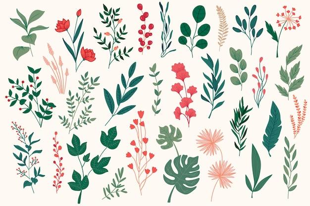 Insieme di scarabocchi botanici disegnati a mano elementi decorativi floreali, foglie, fiori, erbe e rami